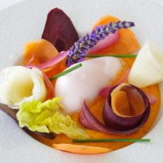Gastronomic restaurants